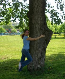 дерево лечит (275x337, 132 Kb)
