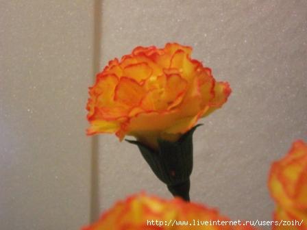 http://img1.liveinternet.ru/images/attach/c/2//69/22/69022083_DSCF1539.JPG