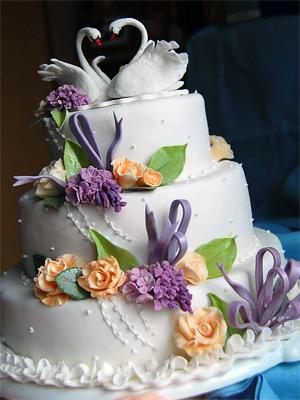свад торт (300x400, 145 Kb)