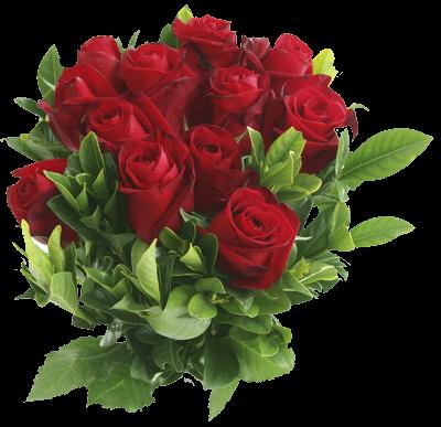 67079212_66251811_64072086_Rose_background_5 (400x387, 259 Kb)