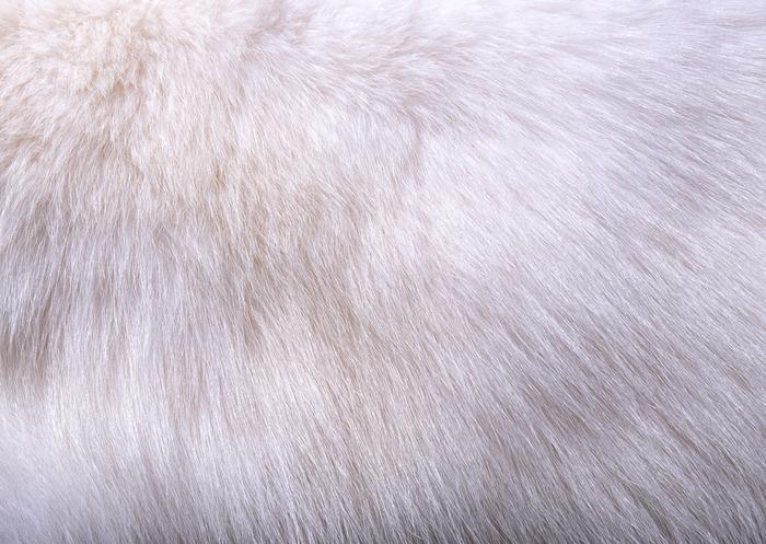 Бесшовную Текстуру Плетения Корзины