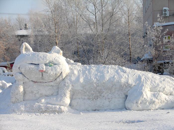 Снежный кот... просто фотка понравилась