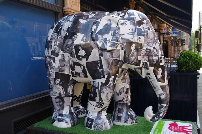 Парад Слонов в Лондоне 2010 36256