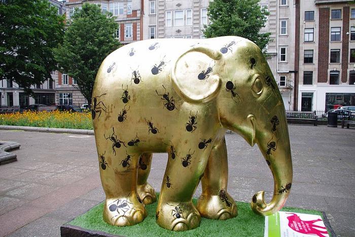 Парад Слонов в Лондоне 2010 23958