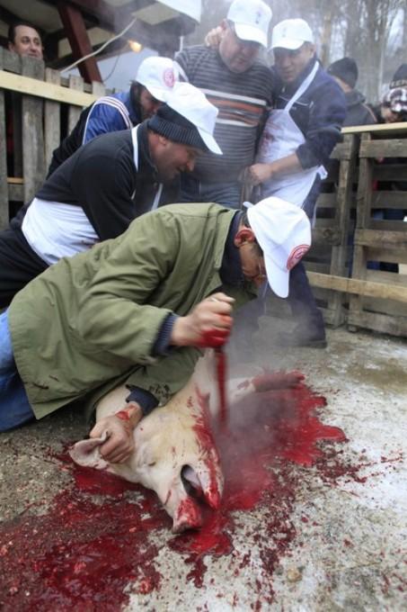 Ежегодный фестиваль свинины в Балваниос (Balvanyos), около 250 км к северу от Бухареста, 5 февраля 2011 года.