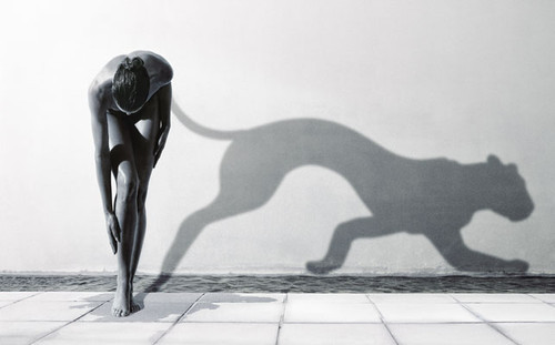 тень на стене