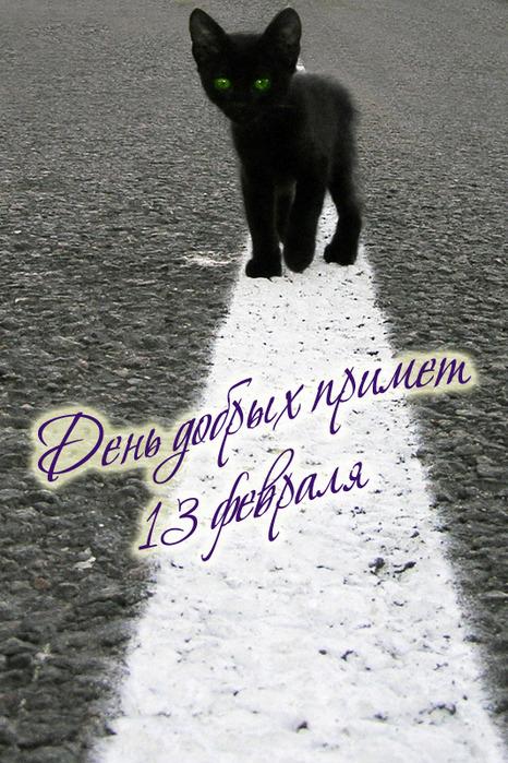 http://img1.liveinternet.ru/images/attach/c/2//70/598/70598822_1297547383_13fevralya2011.jpg