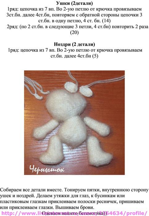 бегемотик 70067690_1296571915_Opisanie_3