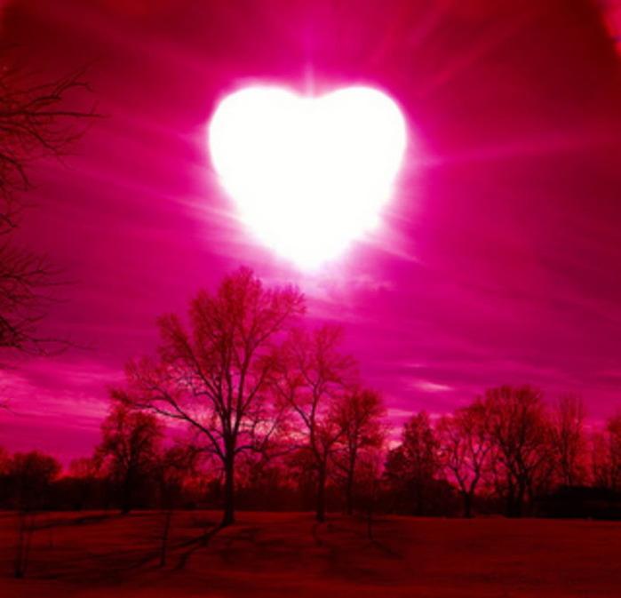 heart (699x673, 75 Kb)