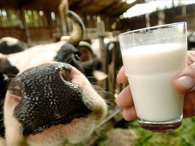 milk (400x300, 21 Kb)