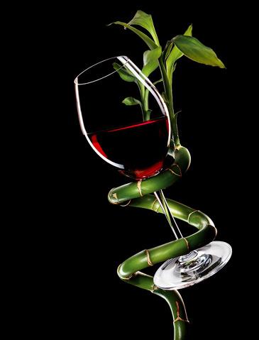 Лечение вином самое интересное в блогах