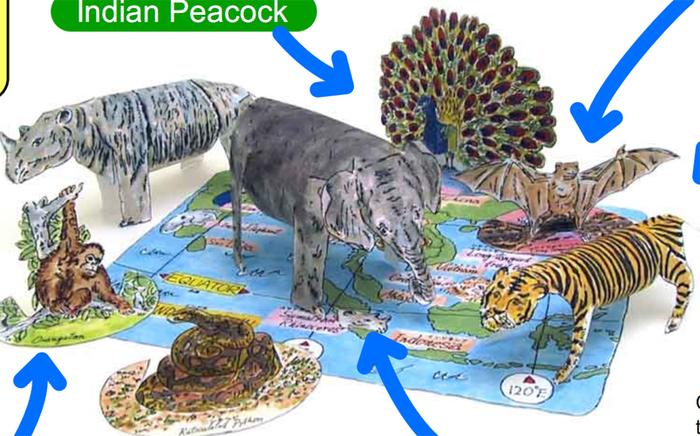 Вырезалки животные Азии