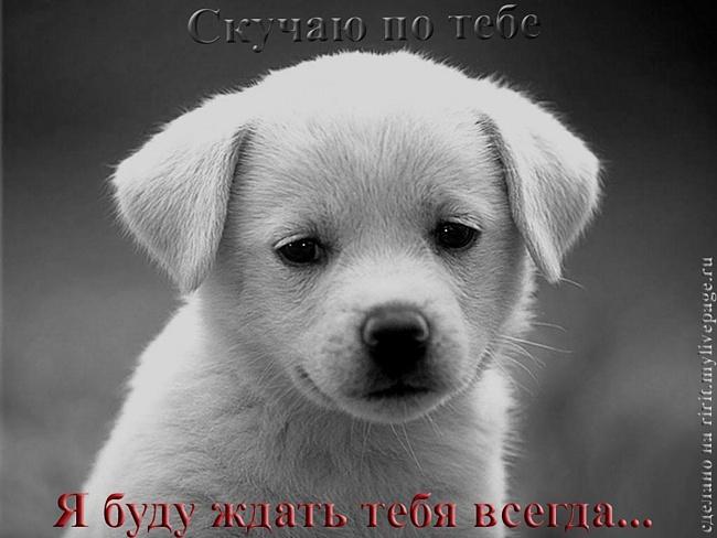 http://img1.liveinternet.ru/images/attach/c/2//70/885/70885834_0921edb127c01f9b134a7f74f3a10350.jpg