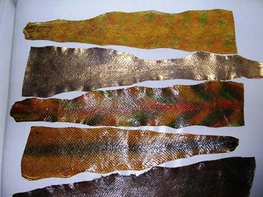 рыбья кожа (384x288, 132 Kb)