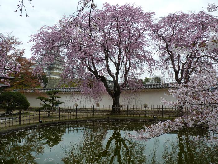 Замок Химедзи - Himeji Castle 18580