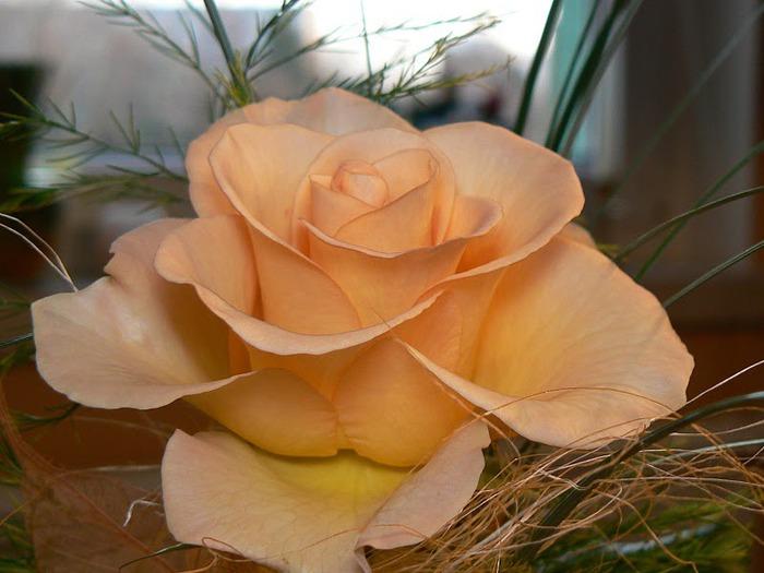 цветочный хоровод 27423