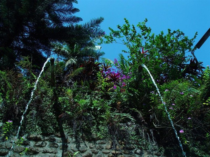 Фотопутешествие по Бали 40