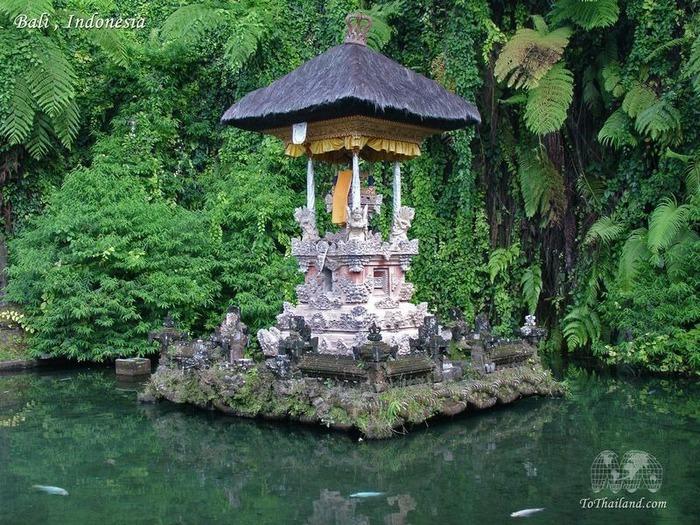 Фотопутешествие по Бали 79