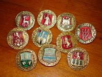 коллекция значков Золотое Кольцо