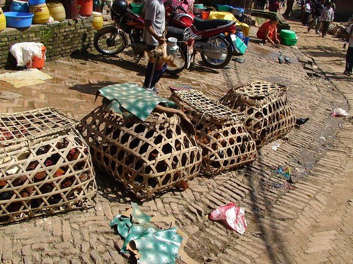 Бхактапур -«город верующих» 31651