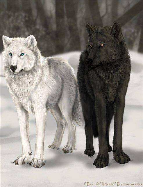 Вяжем волка с описанием