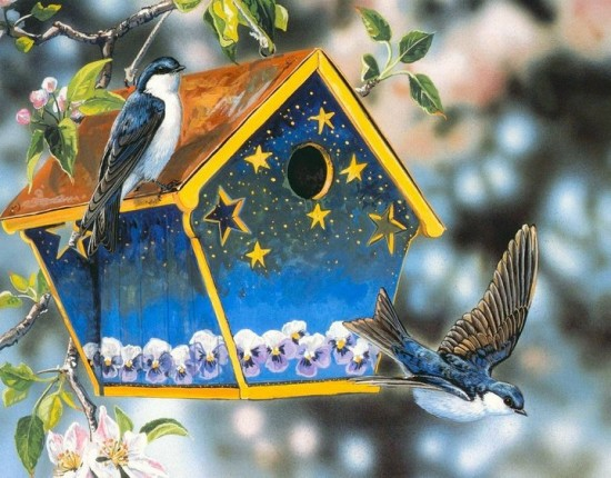 Скачать обои певчие птички, скворечник, Janene Grende 800x600.