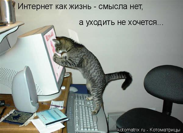 http://img1.liveinternet.ru/images/attach/c/2/65/596/65596647_1287681760_pppp.jpg
