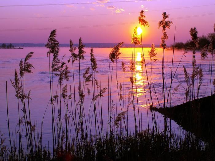 Розовый рассвет на море картины смотреть - 195