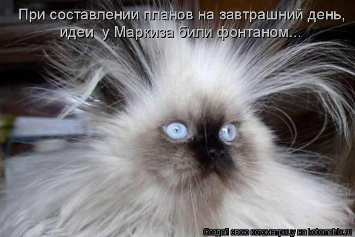 До разрешения кризиса в Украине еще очень далеко, - Штайнмайер - Цензор.НЕТ 907