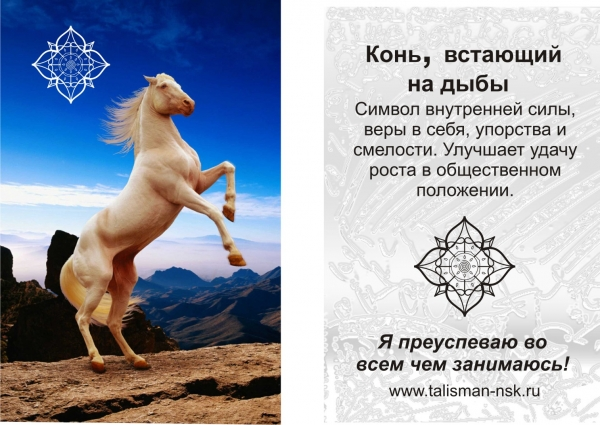 Что значат рисунки на лошади