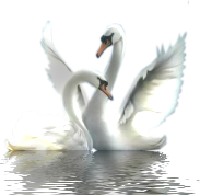 http://img1.liveinternet.ru/images/attach/c/2/67/998/67998091_1292610368_55151342_1483d5c8a61e.png
