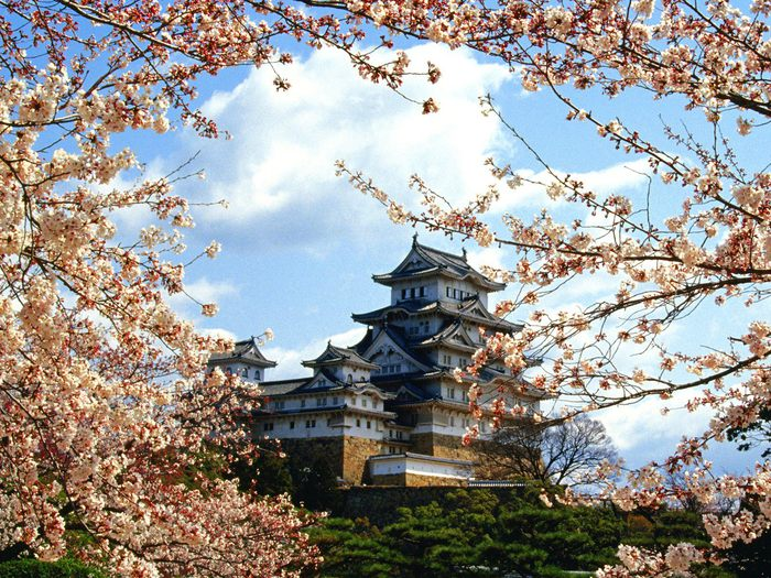 //img1.liveinternet.ru/images/attach/c/2/68/19/68019186_1292661072_World_Japan_Himejijo_Castle__Himeji__Kinki__Japan_007875_.jpg