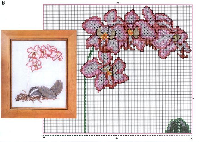 Крест схемы вышивки орхидей