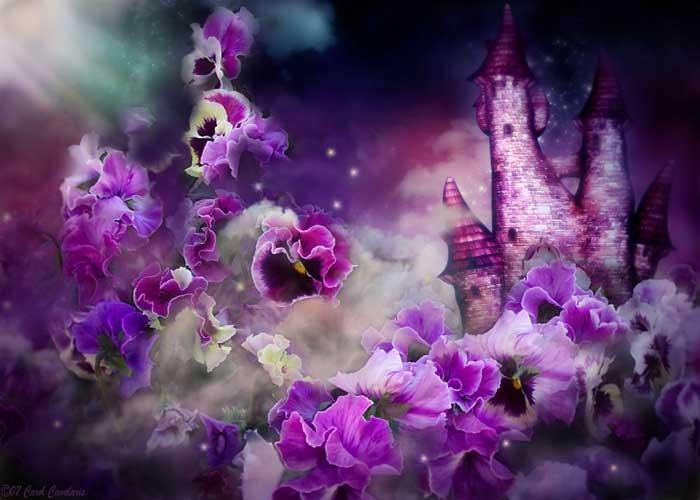 Цветы самое интересное в блогах