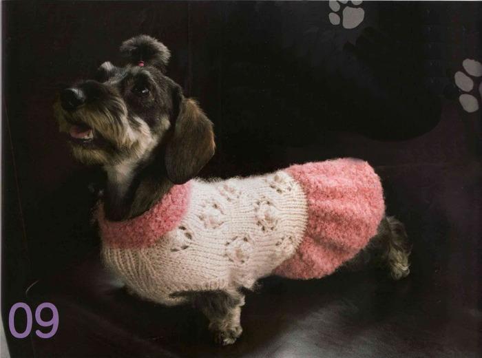 2013 - Вязание для собак