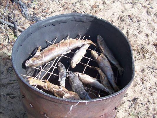 Морда для ловли рыбДома из бруса проектУстановка