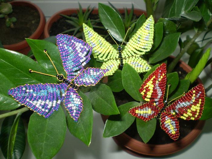 Как сделать из бисера бабочка голубянка Бисероплетение.