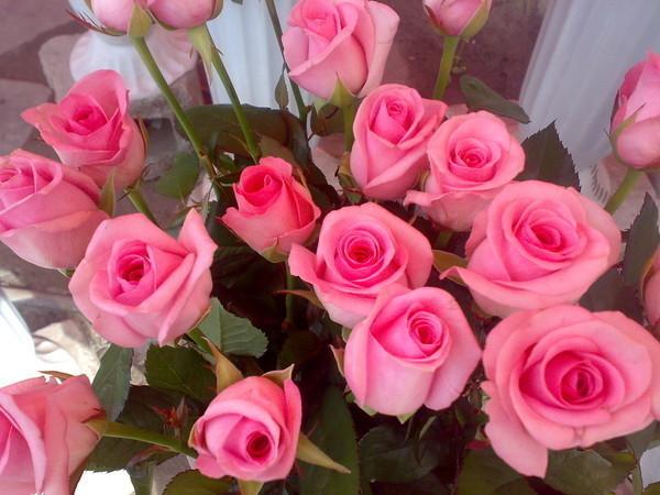 Открытка с розами для сестры 491
