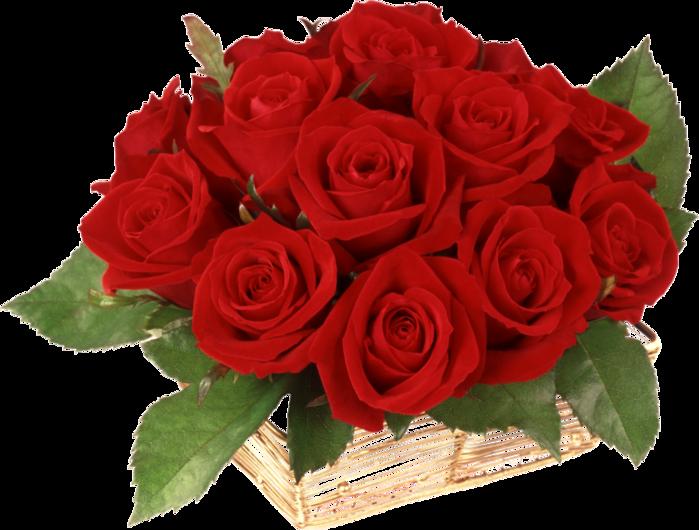 http://img1.liveinternet.ru/images/attach/c/2/70/620/70620282_d6f32296a173_1024x768.png