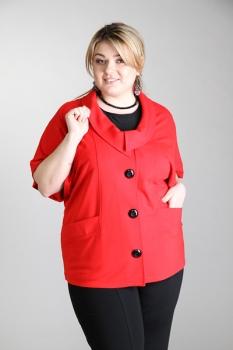 Стильная Верхняя Одежда Для Полных Женщин