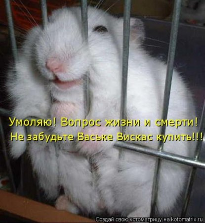 """"""",""""images.rambler.ru"""