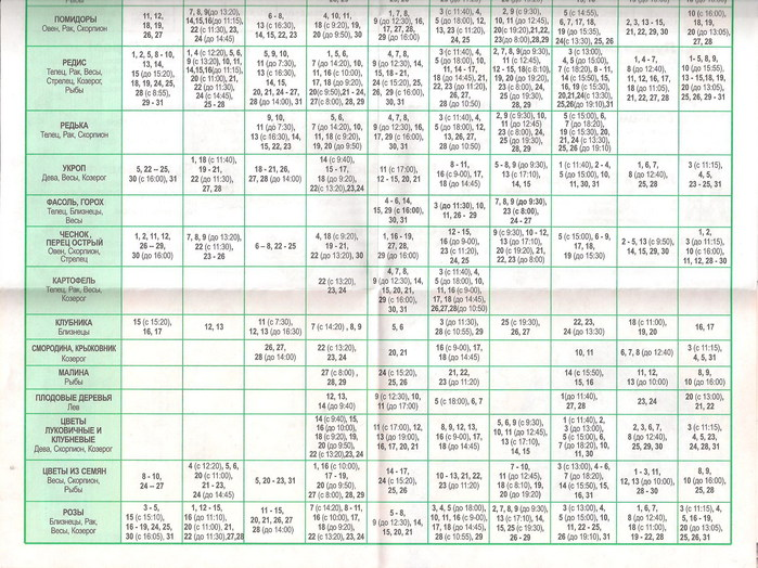 календарь на 2011 года: