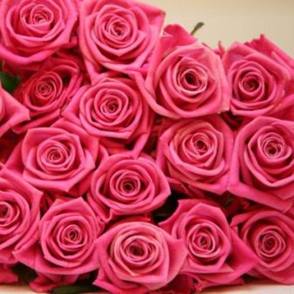 Поздравления / Праздники - Страница 17 71725011_roses