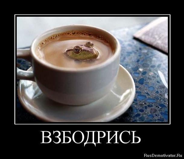http://img1.liveinternet.ru/images/attach/c/2/71/917/71917510_1282843879_310963_vzbodris.jpg