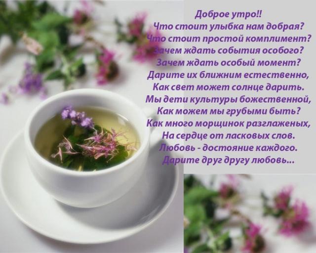 http://img1.liveinternet.ru/images/attach/c/2/72/659/72659262_1301213026_76acaeecc7506ca6662b01dbc5292301_35aca53d6e83384253977f0c5255eafa.jpg
