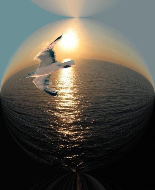 http://img1.liveinternet.ru/images/attach/c/2/72/775/72775386_0a325eedce9ea185b24638f7ceac7f9c.jpg