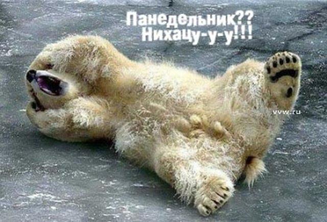http://img1.liveinternet.ru/images/attach/c/2/72/81/72081691_poned1_18.jpg