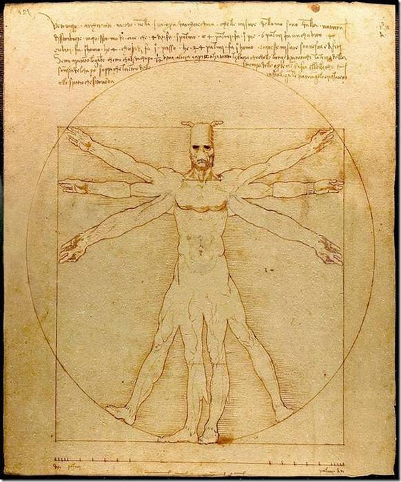 vitruvian man Definition of vitruvian man in the definitionsnet dictionary meaning of vitruvian man what does vitruvian man mean information and translations of vitruvian man in the most comprehensive dictionary definitions resource on the web.