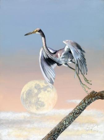 птицы3 (336x450, 93Kb)