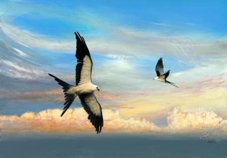 птицы7 (450x312, 92Kb)